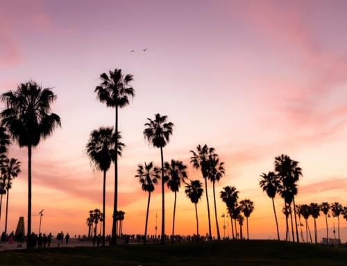 Why L.A. Is a Great City to Be a Surrogate Mother