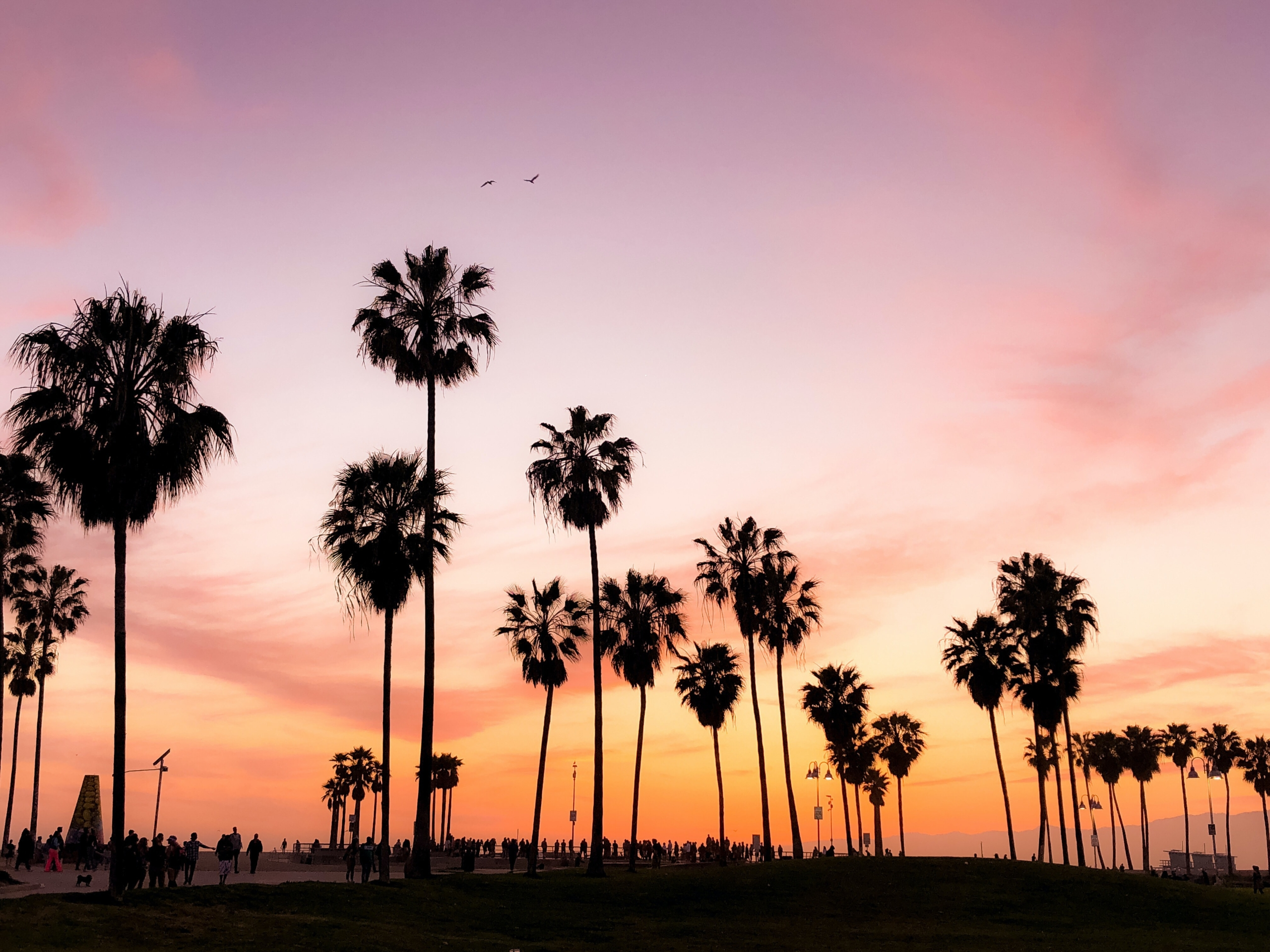 Why LA is a great place to be a surrogate mother
